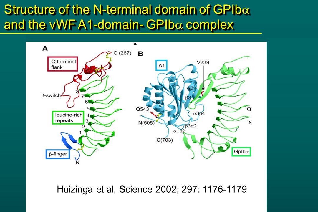 Uff et al, J Biol Chem.