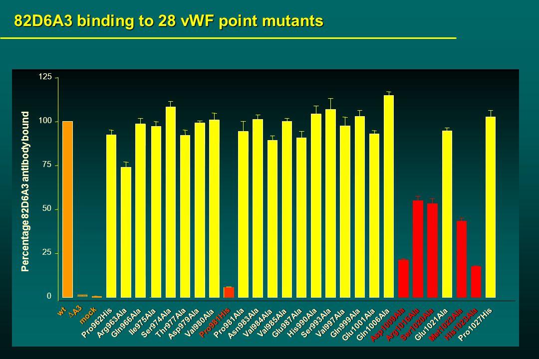 wt  A3 mock 0 25 50 75 100 125 Percentage 82D6A3 antibody bound 82D6A3 binding to 28 vWF point mutants Pro981His Pro981Ala Arg963Ala Pro962His Gln966Ala Thr977Ala Ile975Ala Ser974Ala Asp979Ala Val980Ala Asn983Ala Val984Ala Val985Ala Glu987Ala His990Ala Ser993Ala Val997Ala Gln999Ala Glu1001Ala Gln1006Ala Asp1009Ala Arg1016Ala Ser1020Ala Glu1021Ala Met1022Ala His1023Ala Pro1027His