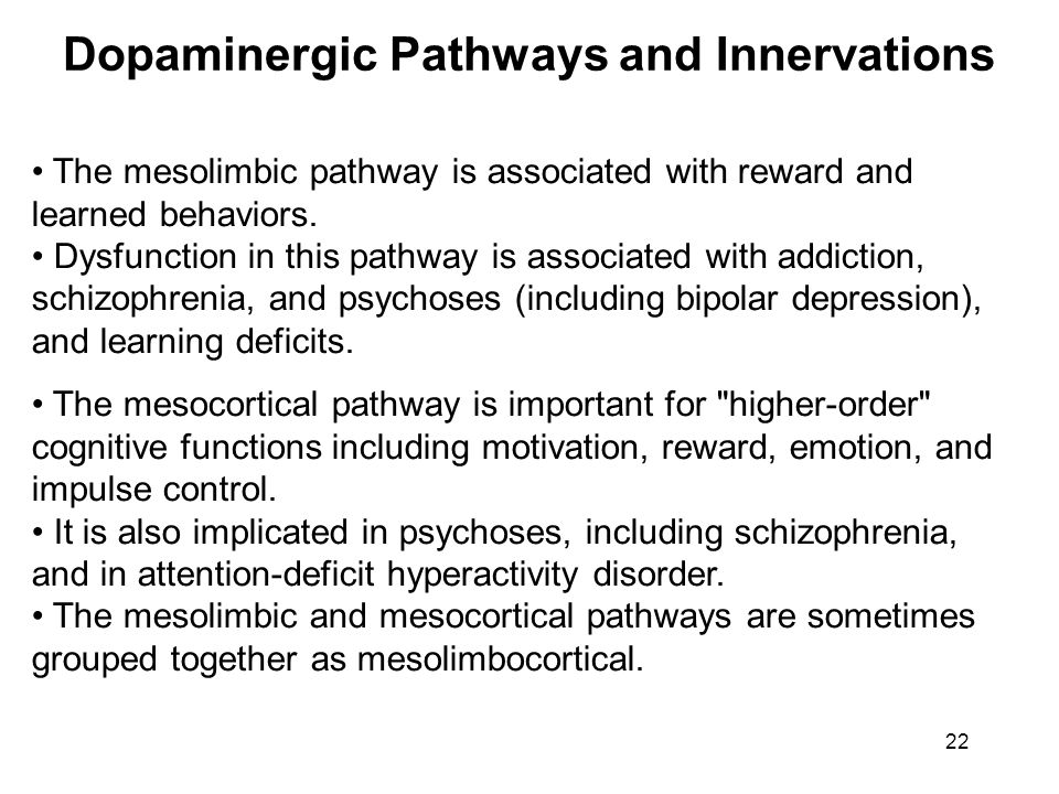 The mesolimbic pathway is associated with reward and learned behaviors. Dysfunction in this pathway is associated with addiction, schizophrenia, and p