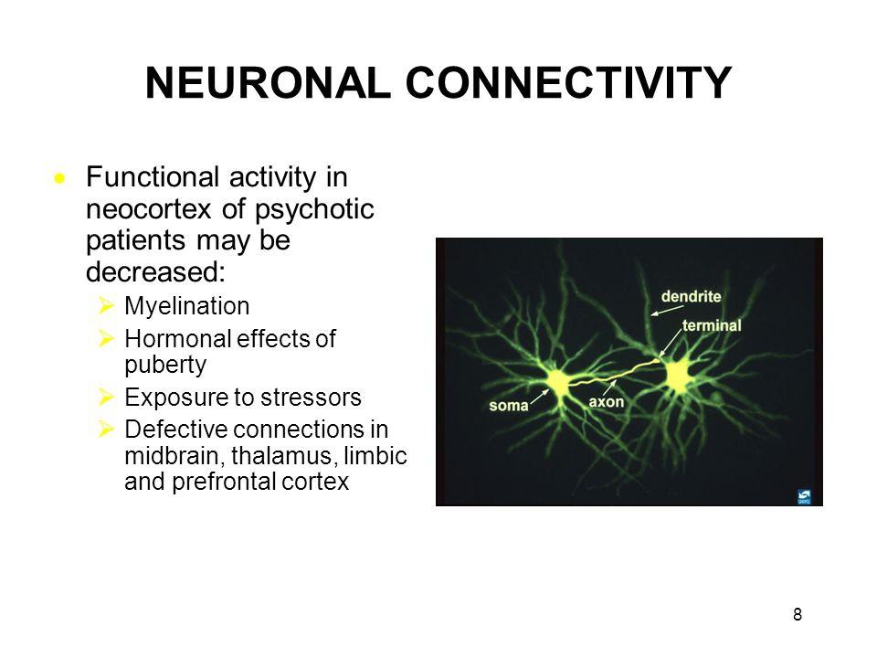 Functional neuroanatomy of PD  Substantia nigra: The major origin of the dopaminergic innervation of the striatum.