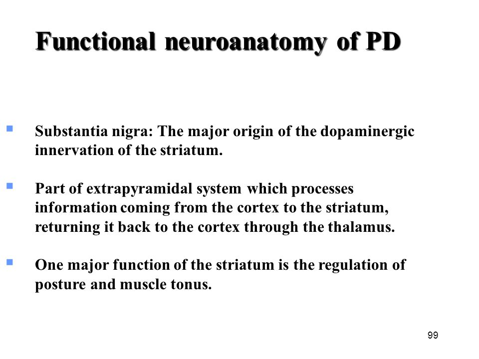 Functional neuroanatomy of PD  Substantia nigra: The major origin of the dopaminergic innervation of the striatum.  Part of extrapyramidal system wh