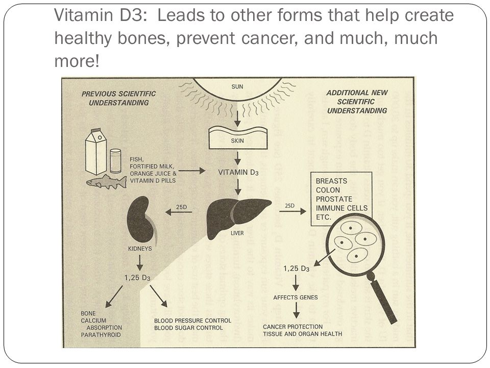 In Summary - Vitamin D is more than just a treatment for stronger bones Growing research supports that Vitamin D can protect us against many diseases: Diminishing muscle strength / weakness Osteoperosis and Osteomalacia Autoimmune diseases such as Multiple Sclerosi (MS) and Rheumatoid Arthritis (RA) Immunity and energy metabolism Diabetes Cancer (prostate, breast, colon, etc) Gum diseases Obesity Renal failure Infertility Pregnancy eclampsia