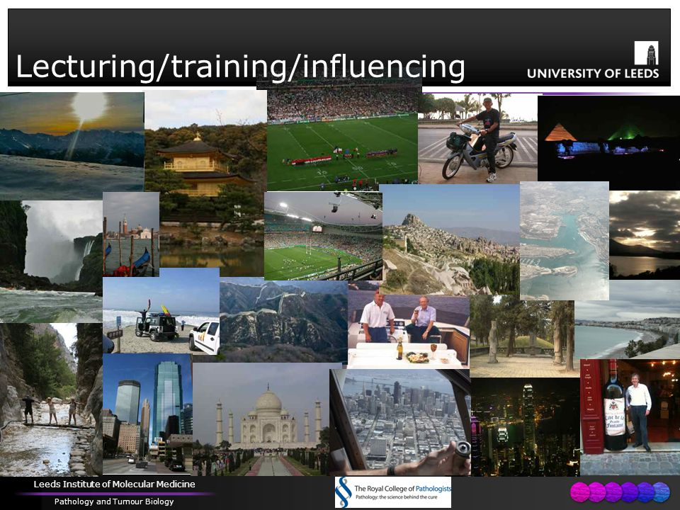 Leeds Institute of Molecular Medicine Pathology and Tumour Biology Lecturing/training/influencing