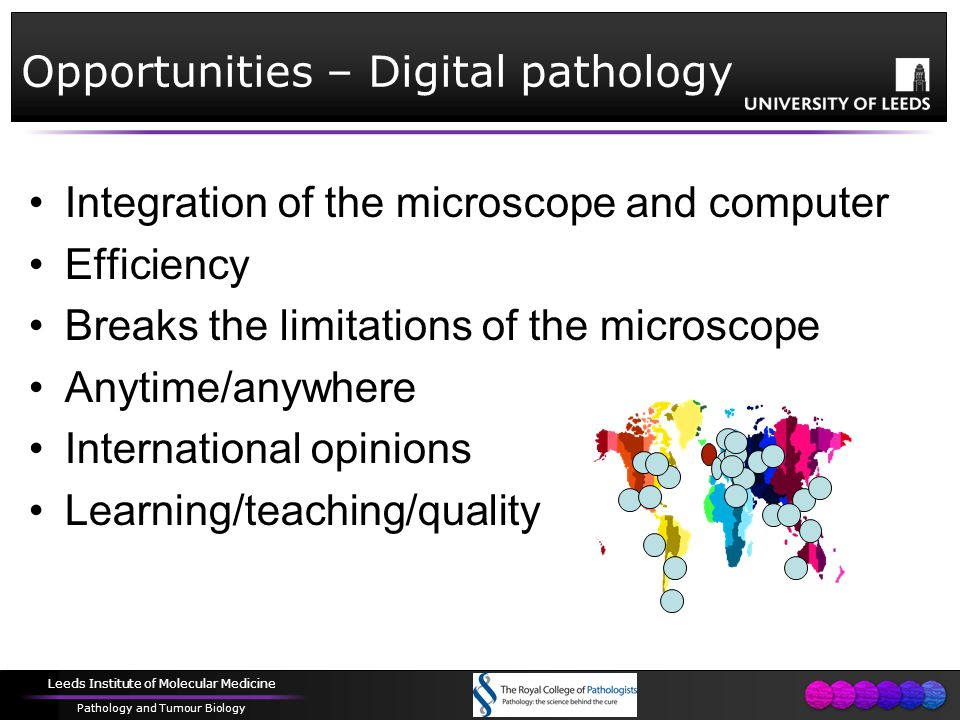 Leeds Institute of Molecular Medicine Pathology and Tumour Biology Opportunities – Digital pathology Integration of the microscope and computer Efficiency Breaks the limitations of the microscope Anytime/anywhere International opinions Learning/teaching/quality