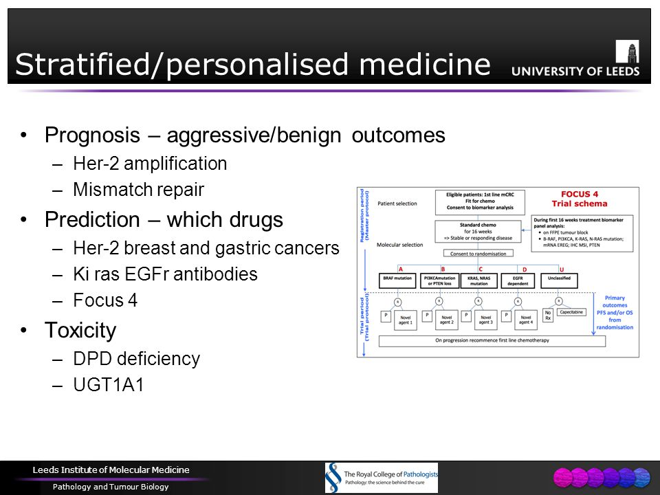 Leeds Institute of Molecular Medicine Pathology and Tumour Biology Stratified/personalised medicine Prognosis – aggressive/benign outcomes –Her-2 amplification –Mismatch repair Prediction – which drugs –Her-2 breast and gastric cancers –Ki ras EGFr antibodies –Focus 4 Toxicity –DPD deficiency –UGT1A1