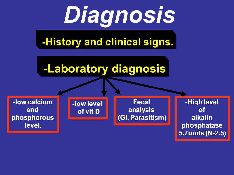 Diagnosis -History and clinical signs. -Laboratory diagnosis -low calcium and phosphorous level. -low level -of vit D -High level of alkalin phosphata