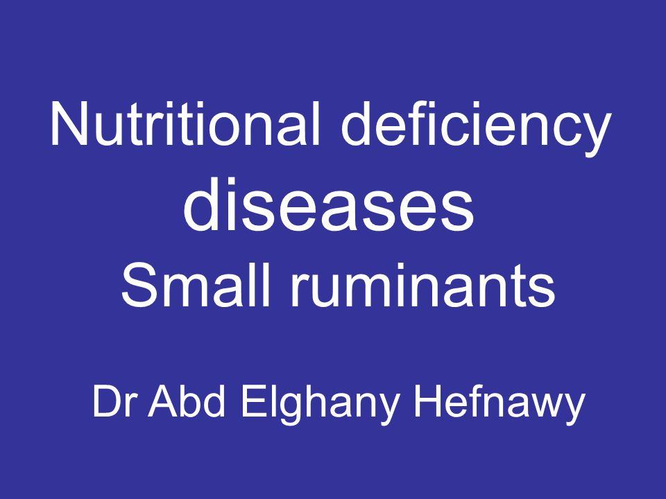 Nutritional deficiency diseases Small ruminants Dr Abd Elghany Hefnawy