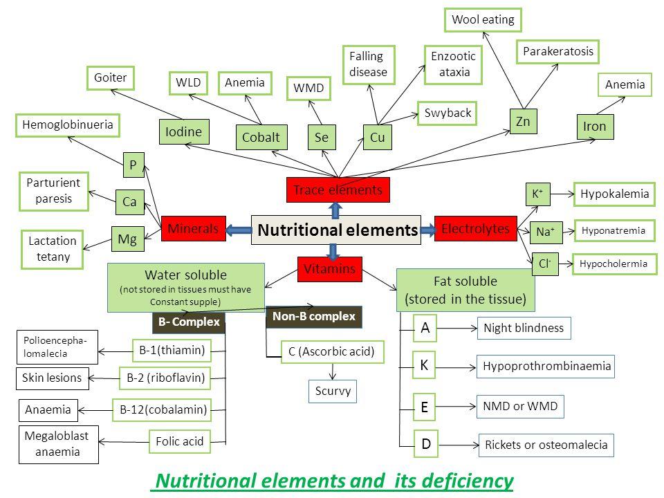 Vit.& Minerals Facts 1-Vit.are essential organic nutrients.