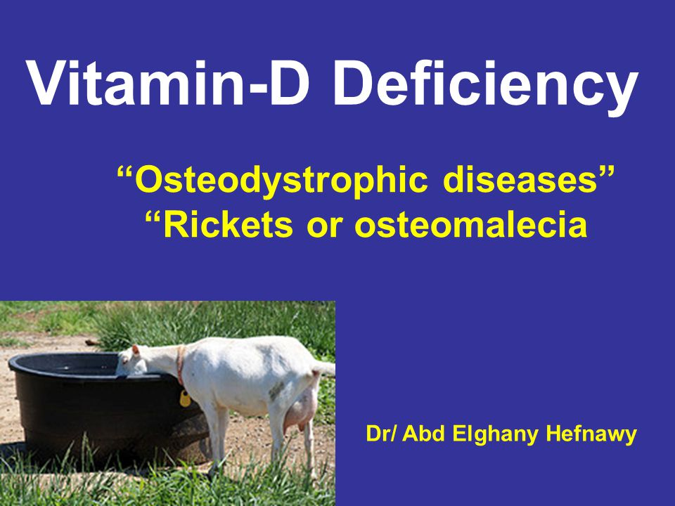 Etiology Primary cause Deficient vit-D in food intake Secondary cause increase caroten intake Insufficient solar irradiation Toxicity of melybodnum or copper chlorid Heavy infestation with GIT.