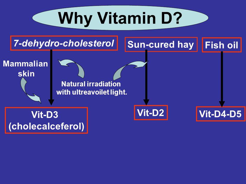 Vit-D3 (cholecalceferol) 7-dehydro-cholesterol Mammalian skin Natural irradiation with ultreavoilet light. Sun-cured hay Vit-D2 Why Vitamin D? Fish oi