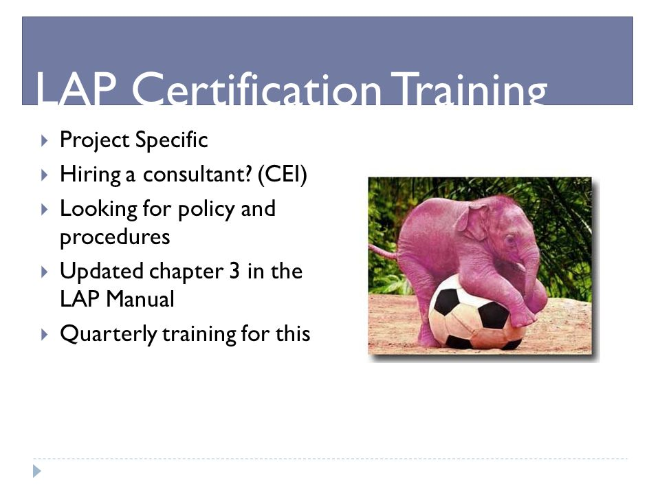  Project Specific  Hiring a consultant? (CEI)  Looking for policy and procedures  Updated chapter 3 in the LAP Manual  Quarterly training for thi