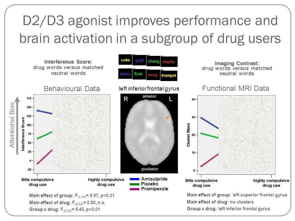 D2/D3 agonist improves performance and brain activation in a subgroup of drug users Amisulpride Placebo Pramipexole Functional MRI Data left inferior frontal gyrus Interference Score: Interference Score: drug words versus matched neutral words sniff coke charlie flute piano trumpet song chang Behavioural Data L R anterior posterior Attentional Bias Main effect of group: F (1,16) = 9.97, p<0.01 Main effect of drug: F (2,32) = 0.60, n.s.