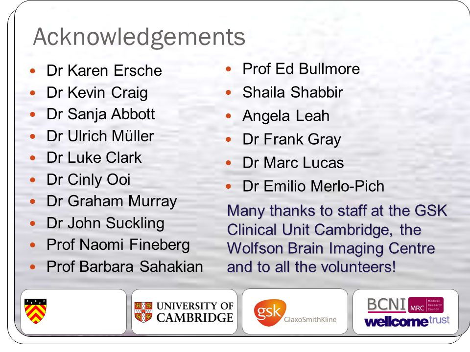 Acknowledgements Dr Karen Ersche Dr Kevin Craig Dr Sanja Abbott Dr Ulrich Müller Dr Luke Clark Dr Cinly Ooi Dr Graham Murray Dr John Suckling Prof Nao
