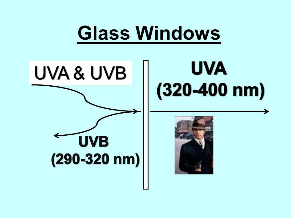 Sun Glass UVB