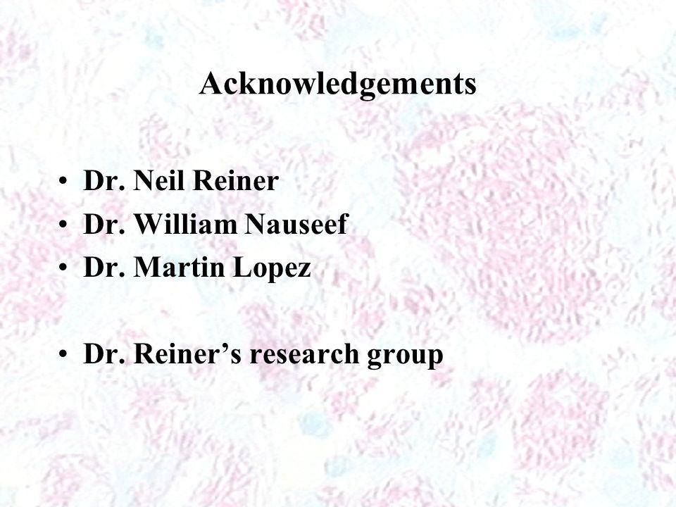 Acknowledgements Dr. Neil Reiner Dr. William Nauseef Dr. Martin Lopez Dr. Reiner's research group
