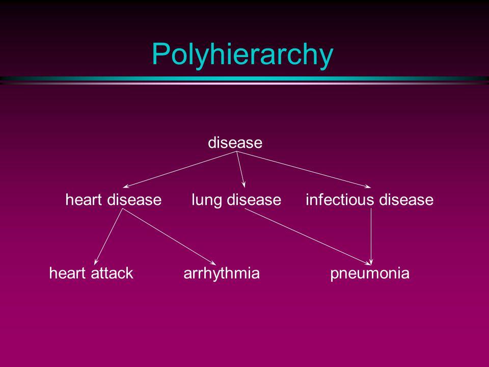 Polyhierarchy disease heart attackarrhythmia heart diseaselung diseaseinfectious disease pneumonia