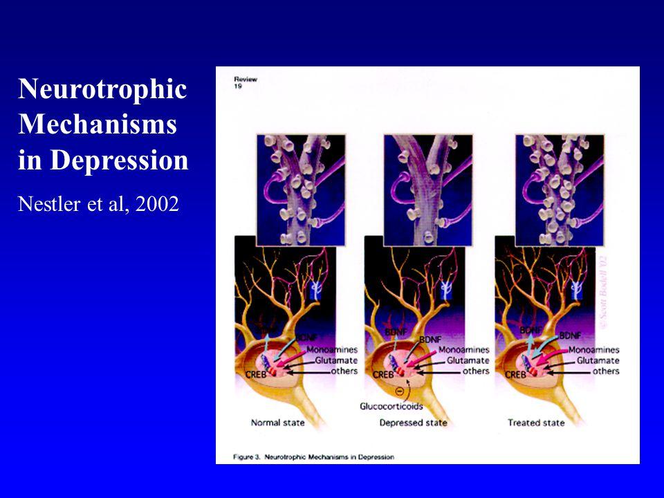 Neurotrophic Mechanisms in Depression Nestler et al, 2002