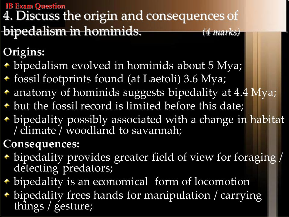 4.Discuss the origin and consequences of bipedalism in hominids.
