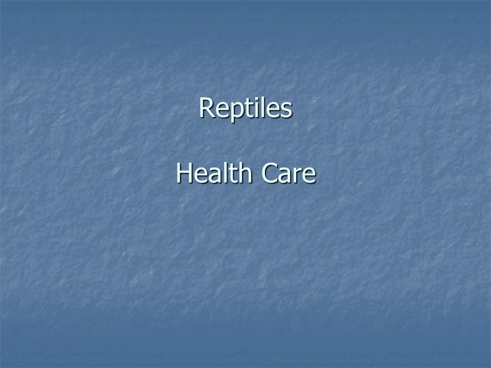 Reptiles Health Care