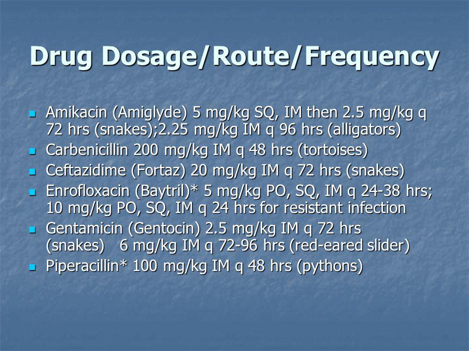 Drug Dosage/Route/Frequency Amikacin (Amiglyde) 5 mg/kg SQ, IM then 2.5 mg/kg q 72 hrs (snakes);2.25 mg/kg IM q 96 hrs (alligators) Amikacin (Amiglyde