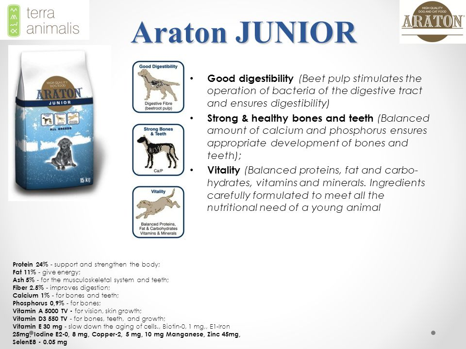 Araton JUNIOR Good digestibility (Beet pulp stimulates the operation of bacteria of the digestive tract and ensures digestibility) Strong & healthy bones and teeth (Balanced amount of calcium and phosphorus ensures appropriate development of bones and teeth); Vitality (Balanced proteins, fat and carbo- hydrates, vitamins and minerals.