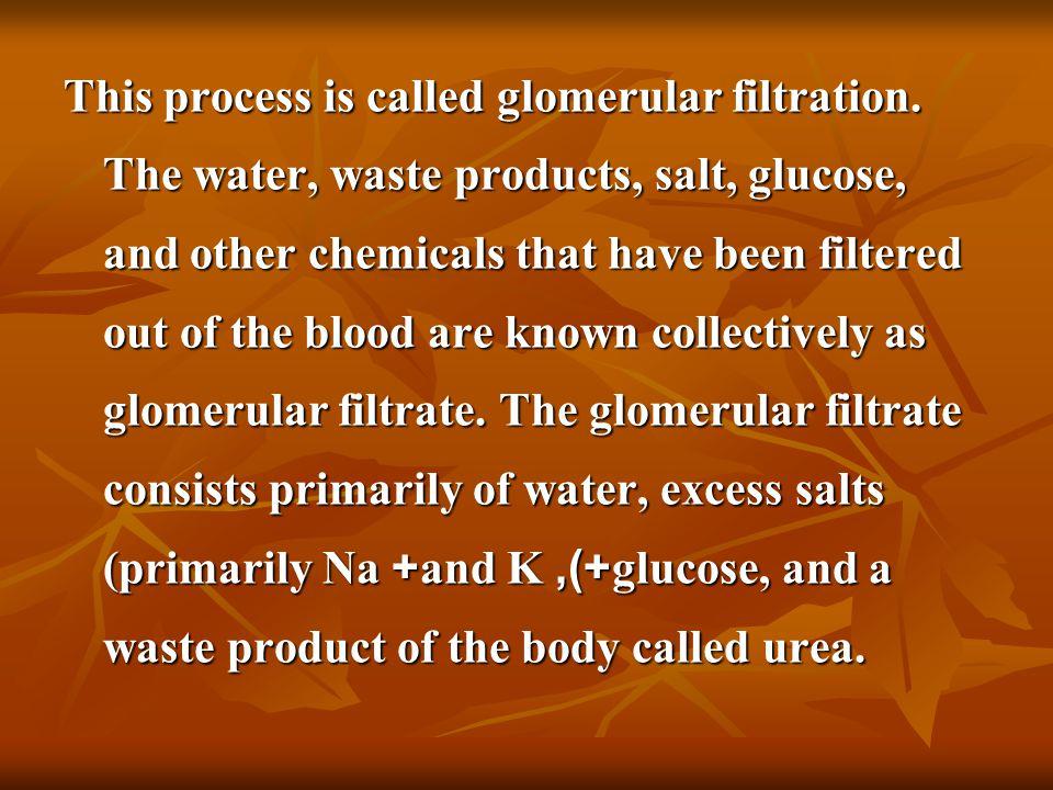 Laboratory tests: Glomerular function tests: clearance Creatinine clearance test.