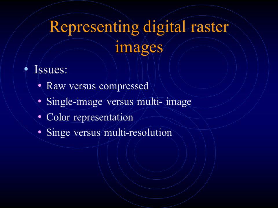 Representing digital raster images Issues: Raw versus compressed Single-image versus multi- image Color representation Singe versus multi-resolution