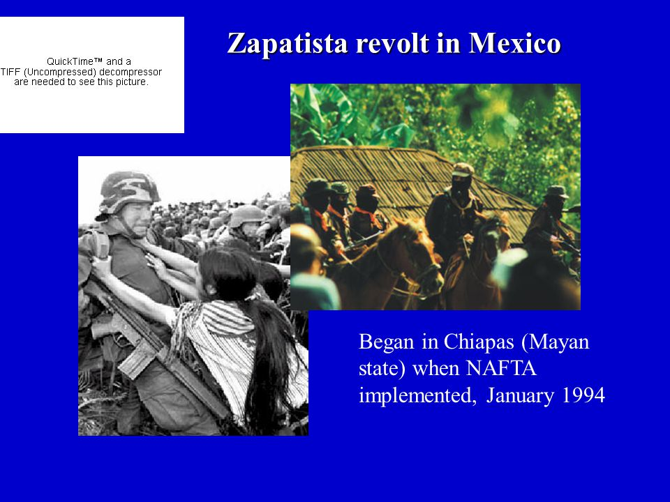 Zapatista revolt in Mexico Began in Chiapas (Mayan state) when NAFTA implemented, January 1994