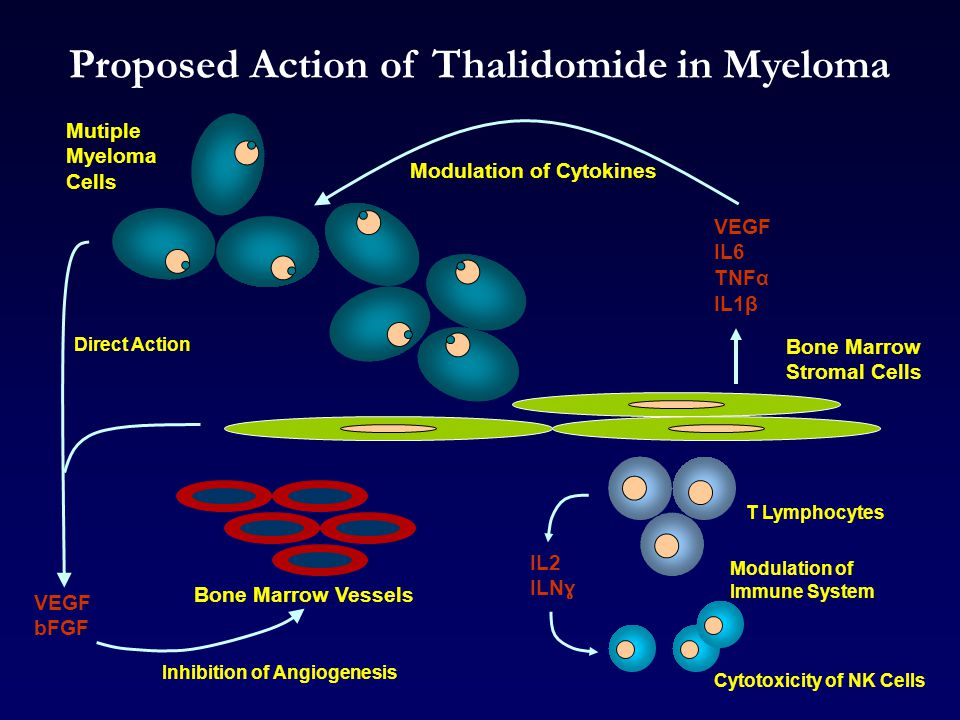 Proposed Action of Thalidomide in Myeloma Mutiple Myeloma Cells T Lymphocytes Bone Marrow Stromal Cells Modulation of Cytokines Bone Marrow Vessels Cytotoxicity of NK Cells Modulation of Immune System Direct Action Inhibition of Angiogenesis VEGF IL6 TNFα IL1β IL2 ILN ɣ VEGF bFGF