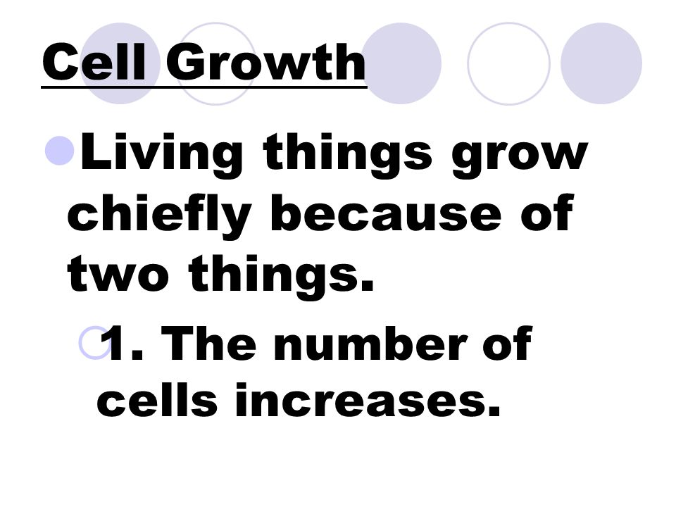 Cell Growth Living things grow chiefly because of two things.  1. The number of cells increases.