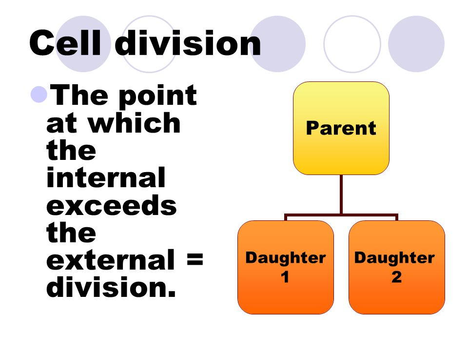 Cell division The point at which the internal exceeds the external = division.