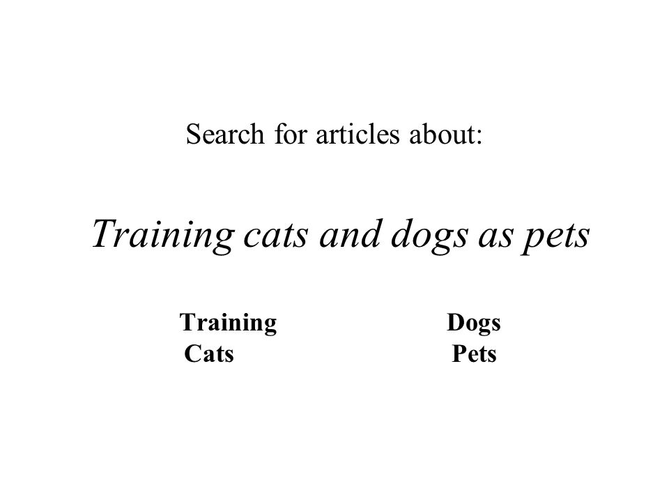 Training cats and dogs as pets TrainingDogs CatsPets Search for articles about: