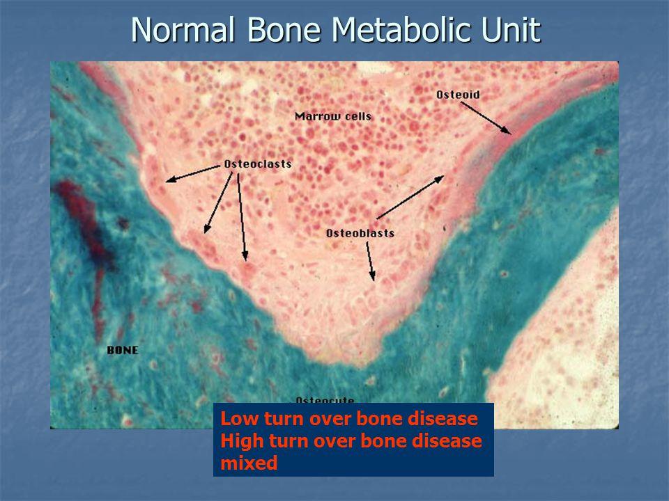 Normal Bone Metabolic Unit Low turn over bone disease High turn over bone disease mixed