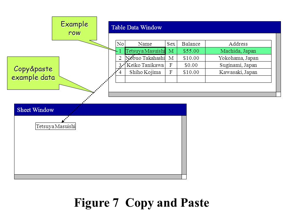 Table Data WindowSheet Window NameNoSexBalanceAddress 1M$55.00Machida, Japan Nobuo Takahashi2M$10.00Yokohama, Japan Keiko Tanikawa3F$0.00Suginami, Japan Shiho Kojima4F$10.00Kawasaki, Japan Examplerow Tetsuya Masuishi Copy&paste example data Tetsuya Masuishi Figure 7 Copy and Paste