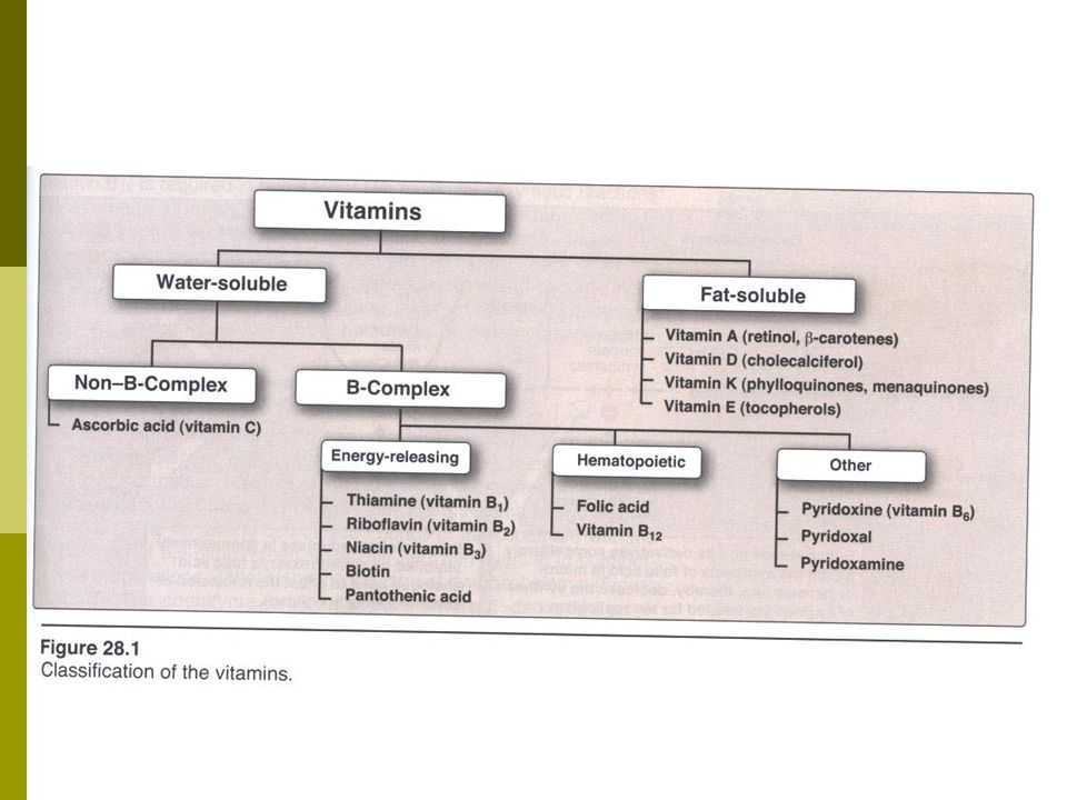 Common features of fat soluble vitamins:  Released, absorbed and transported with the fat in the diet.