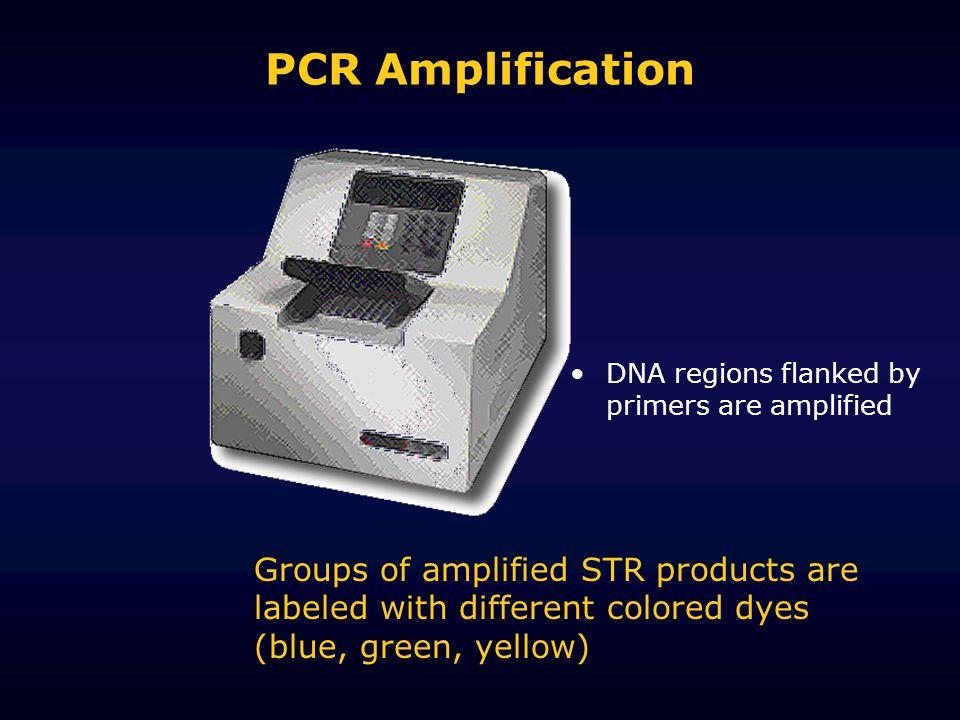 The ABI 310 Genetic Analyzer: SIZE, COLOR & AMOUNT