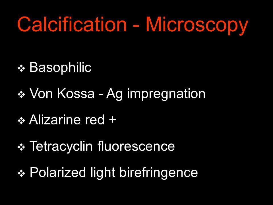  Basophilic  Von Kossa - Ag impregnation  Alizarine red +  Tetracyclin fluorescence  Polarized light birefringence Calcification - Microscopy