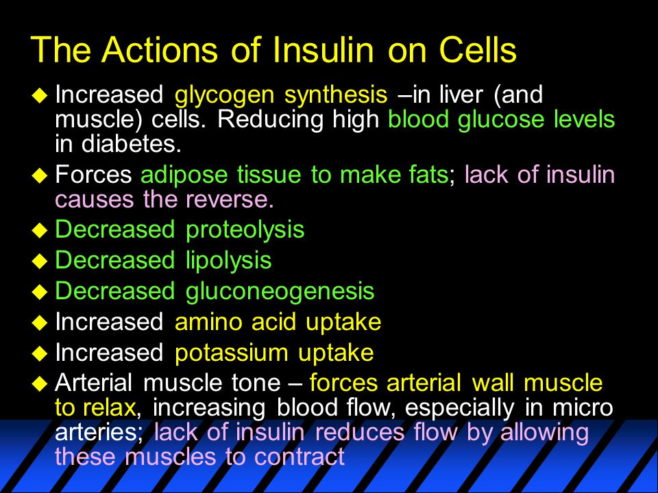 The Actions of Insulin on Cells u Increased glycogen synthesis –in liver (and muscle) cells.