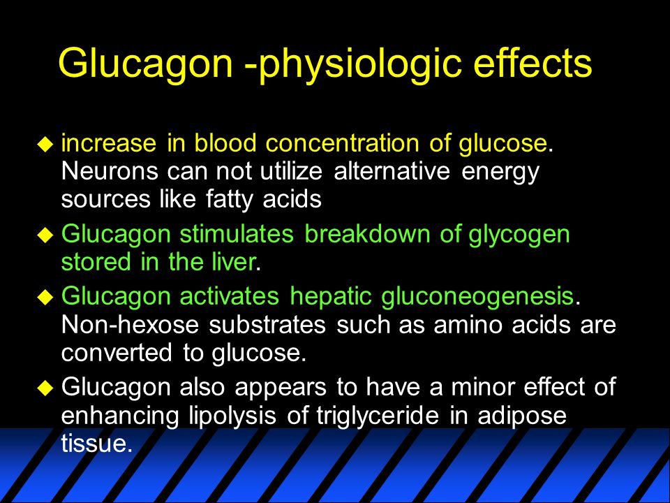 Control of Glucagon Secretion u Secreted in response to hypoglycemia u Two other conditions : –Elevated blood levels of amino acids, after consumption of a protein-rich meal.
