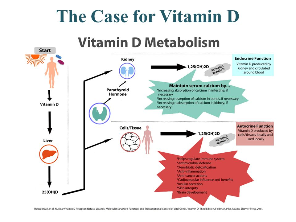 The Case for Vitamin D