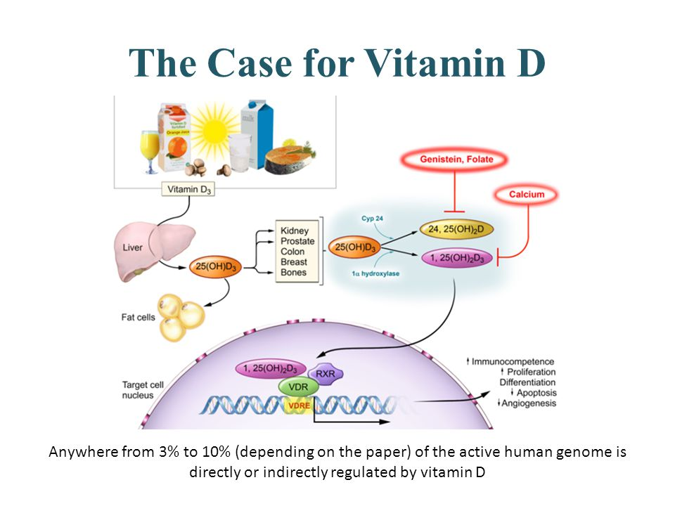 The Case for Vitamin D Anywhere from 3% to 10% (depending on the paper) of the active human genome is directly or indirectly regulated by vitamin D