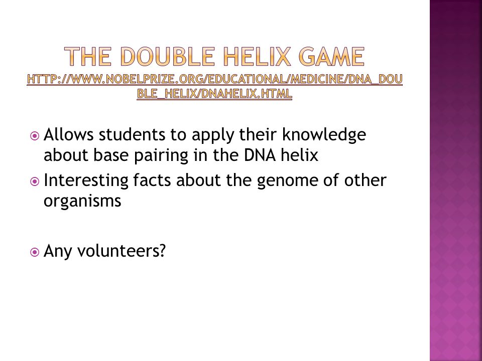  Allows students to apply their knowledge about base pairing in the DNA helix  Interesting facts about the genome of other organisms  Any volunteers?