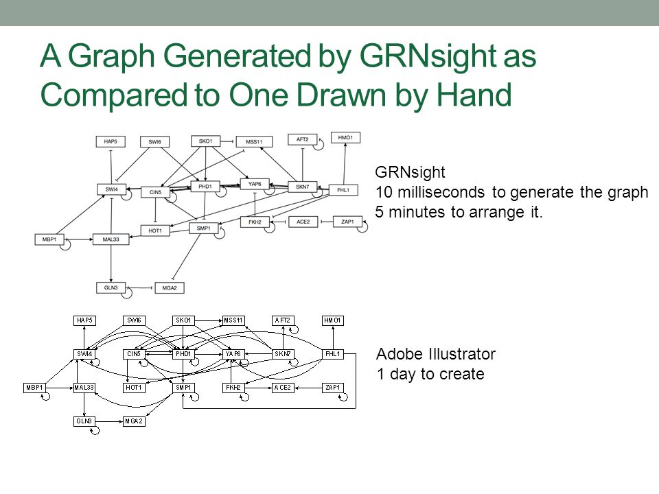 A Graph Generated by GRNsight as Compared to One Drawn by Hand GRNsight 10 milliseconds to generate the graph 5 minutes to arrange it. Adobe Illustrat