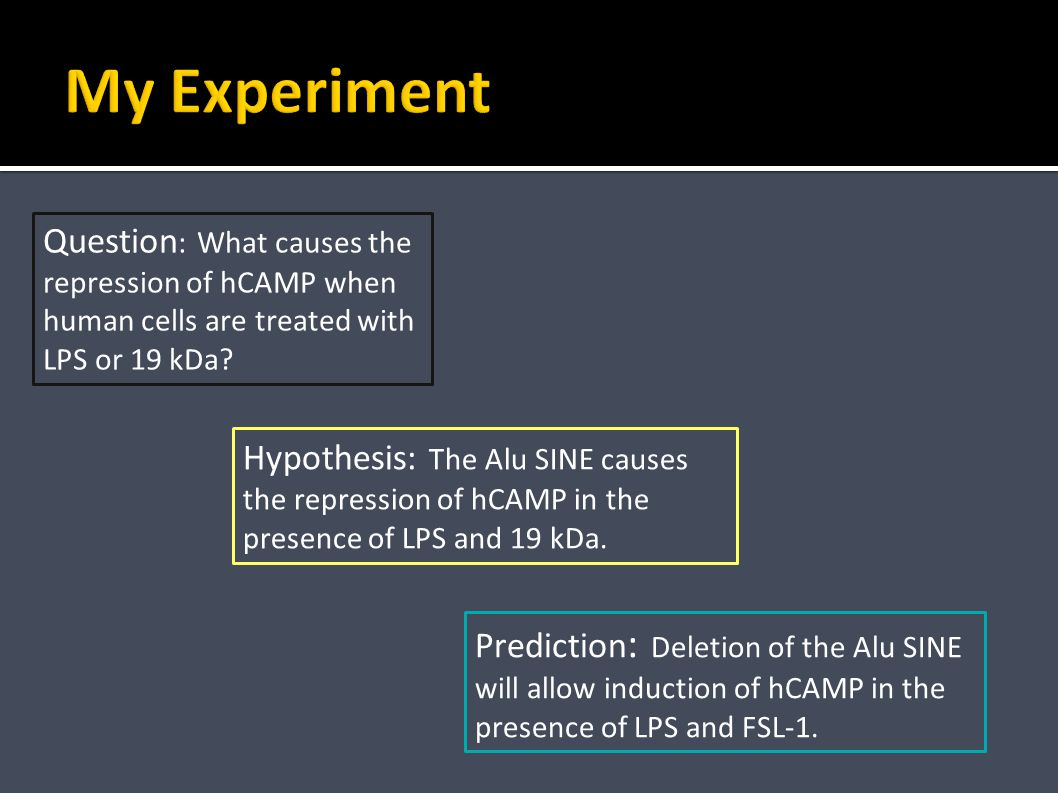 Hypothesis: The Alu SINE causes the repression of hCAMP in the presence of LPS and 19 kDa.