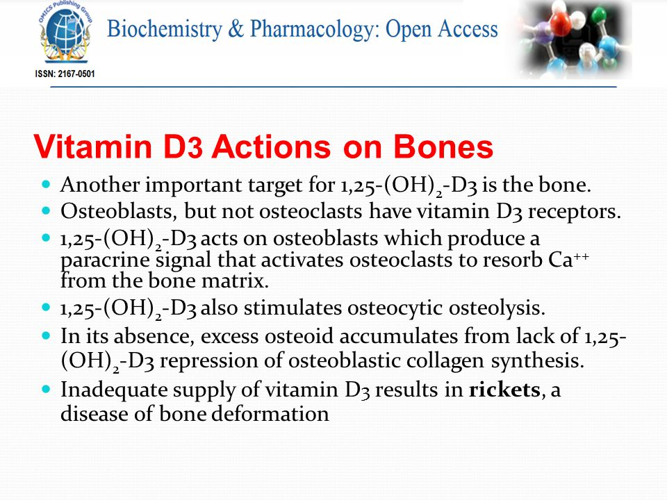Vitamin D 3 Actions on Bones Another important target for 1,25-(OH) 2 -D3 is the bone.