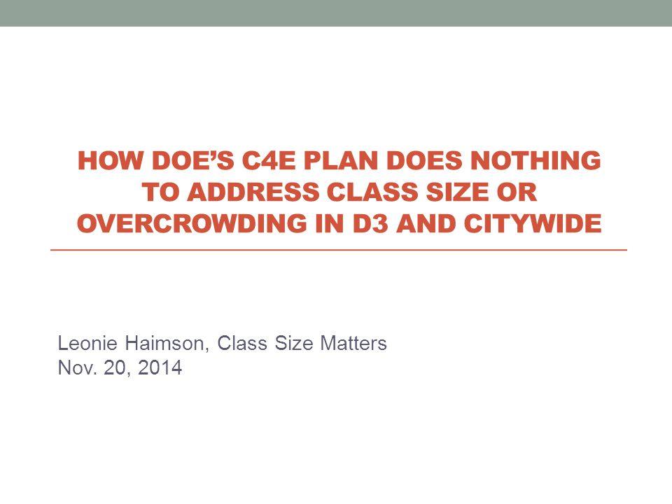 Leonie Haimson, Class Size Matters Nov.