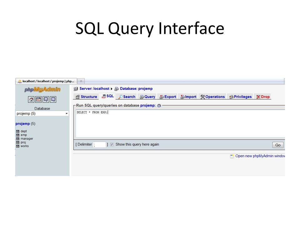 SQL Query Interface