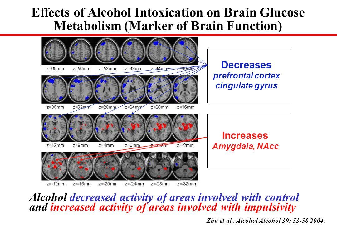 Chronic Drug Effects – Disruption of Inhibitory Control DA signal DA D2 Receptors Metabolism
