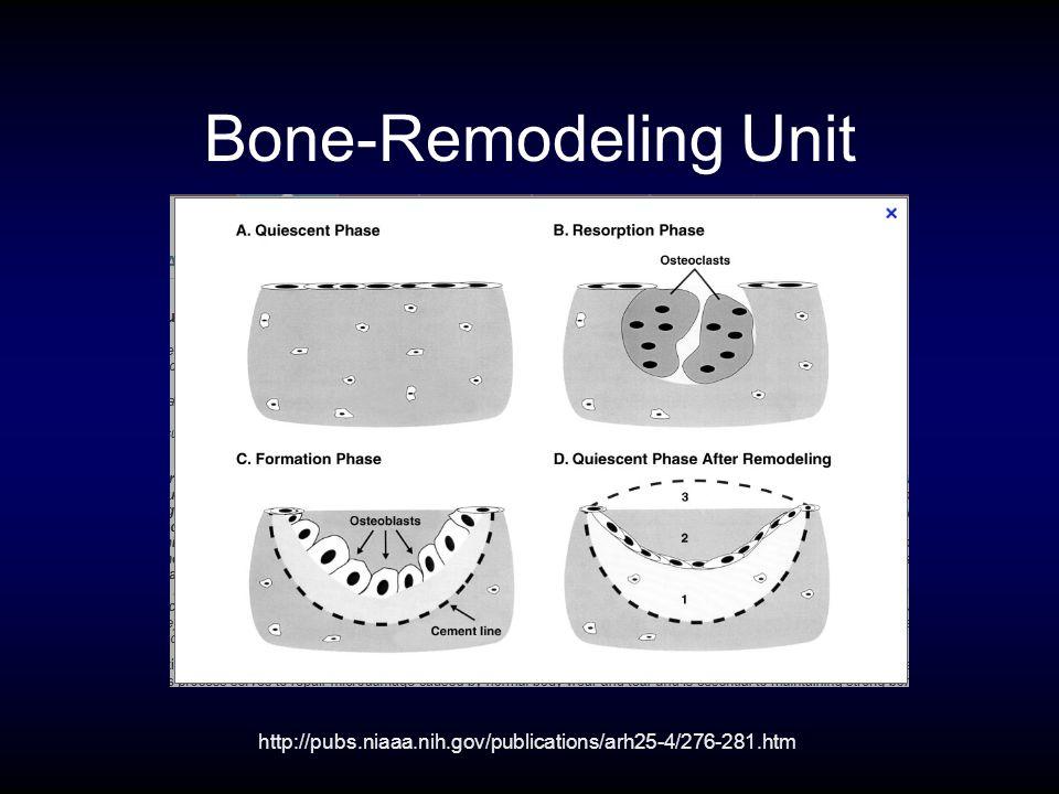 Bone-Remodeling Unit http://pubs.niaaa.nih.gov/publications/arh25-4/276-281.htm
