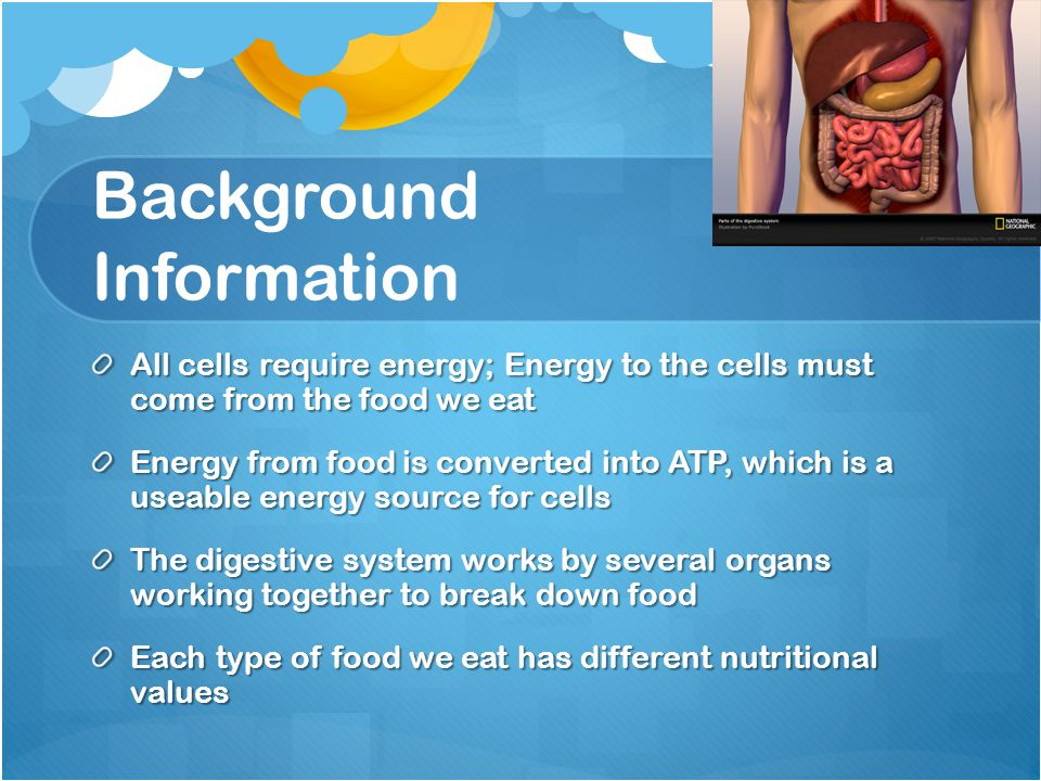 Background Information All cells require energy; Energy to the cells must come from the food we eat Energy from food is converted into ATP, which is a